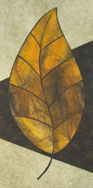Another large scale graphic leaf in autumn colors on light and dark green backbround.